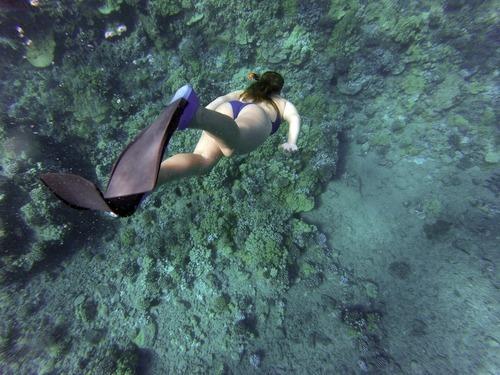 Le snorkeling : observer les poissons en toute sécurité